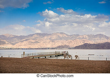 Coral Beach Nature Reserve over Red Sea in Eilat, Israel,...
