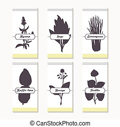 Spicy herbs silhouettes collection. Hand drawn hyssop, sage,...
