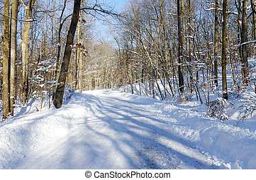 Snow Covered Road - A snow covered road in the woods.