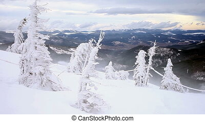Winter The Mountain landscape