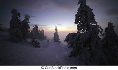 Sunrise in winter Carpathian mountains, Dragobrat, Ukraine...