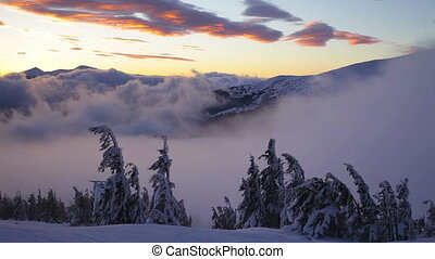 Sunrise in winter Carpathian mountains, Dragobrat, Ukraine....