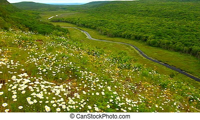 Big Carp River Valley Michigan - Prairie flowers overlooking...