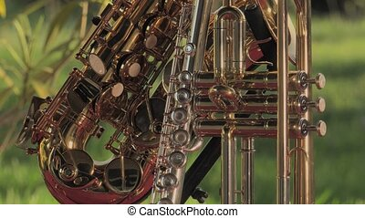 repairer of brass and wood wind - Set of Brass instruments...