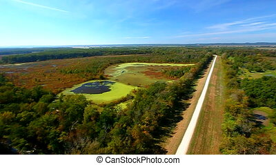 Shawnee National Forest Illinois - View of wetlands from...