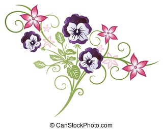 Pansy - Beautiful summer flowers, pink and purple pansy.