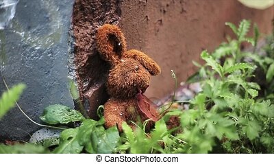 Lost brown plush hare at concrete wall and green grass. Summer. Nobody.