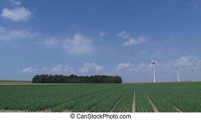 onion field polderlandscape winfarm - NOORDOOSTPOLDER, THE...