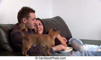 Adorable couple watching television with their sitting on...