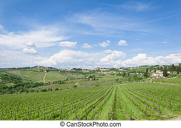 Cloudy sky in tuscan vineyard