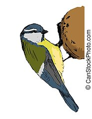 Sketch tit bird Vector illustration - Sketch tit bird over...