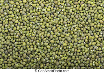 Harvest of mung beans - High angle closeup shot of harvest...