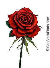 Red rose digital painting - Red rose flower original digital...