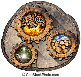 Firewood Production - Wooden Gears - Section of tree trunk...