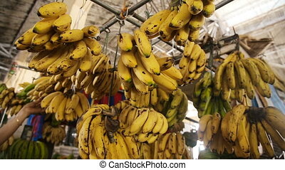 bananas in the fruit market - Bunch of ripened bananas at...