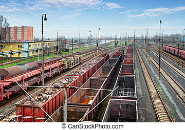 Cargo train platform with container