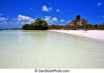 and rock in the relax isla contoy mexico - coastline and...