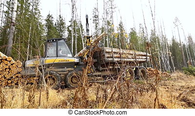 View on harvesting machine loading logs in forest
