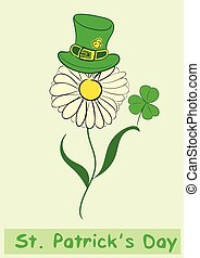 Camomile of a St Patricks Day - Camomile in a hat of a St...