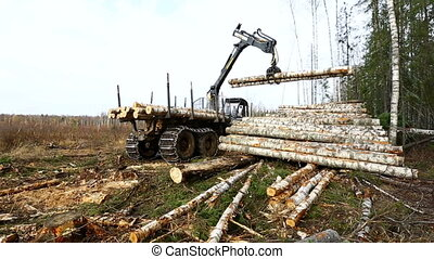 Forest work View on logger unloads timber - Forest work View...