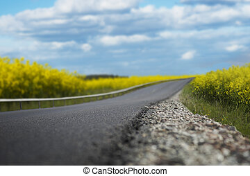Summer road - Beautiful road in summer, with blue sky and...