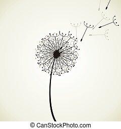 Flower a dandelion4