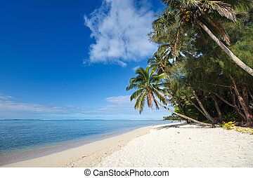 Beautiful tropical beach at exotic island in South Pacific