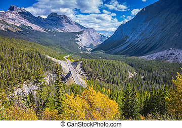 Scenic canyon in  Banff National Park