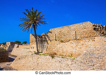 Deep protective moat around the ancient Caesarea - Lone palm...