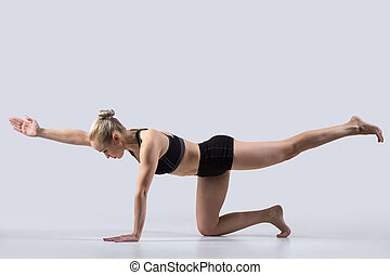 Bird dog Pose, chakravakasana - Sporty beautiful young woman...