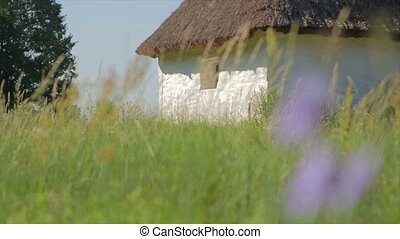 Historic hut in a field. Architectural memo. House of clay....