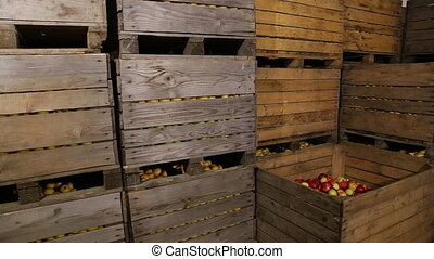 big box of apples in storage