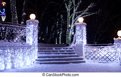Park at night - Beautiful lit decorated Christmas Park at...
