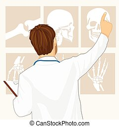 male doctor pointing on tomography, rear view