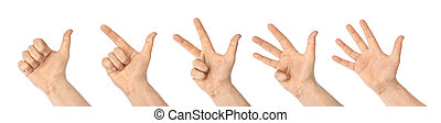 Counting hands (1 to 5) isolated on white background