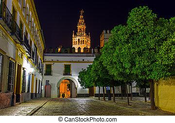 Cathedral La Giralda at Sevilla Spain - architecture...