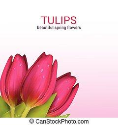 Spring flowers composition - Bright spring background design...