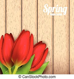Spring flowers composition - Bright spring background design...