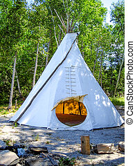 Tepee in the Forest - A tepee set up in the forest.