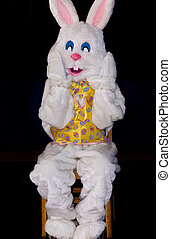 Rabbit sitting in a chair for Easter