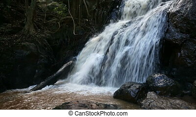 Waterfall in Karura Forest, Nairobi - The biggest waterfall...