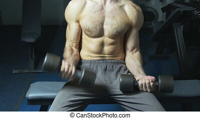 Muscular torso and hands with dumbbells of man exercising in gym