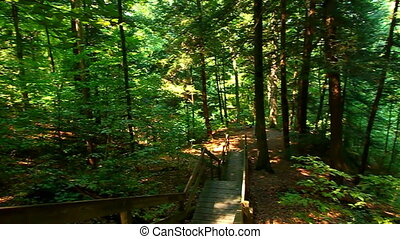 Shades State Park Indiana - Shades State Park is located in...