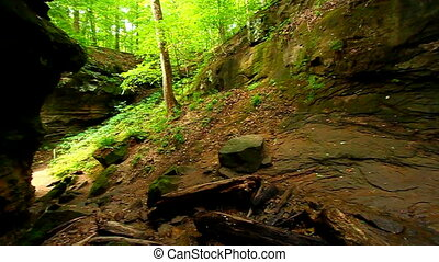Turkey Run State Park Landscape - Falls Canyon is located in...
