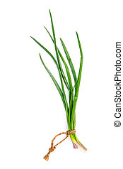 Branch of fresh spring onions for seasoning concept isolated on white background.
