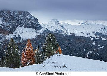 Mountain near Campitello di fassa, Dolomites, Italy -...