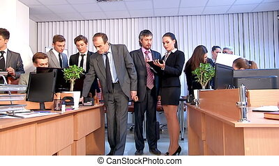 Group business people working in office. - Group business...