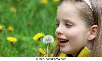 Child blowing on dandelion in park outdoor. - Little girl...