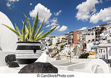 Black and white pot with cactus in Oia