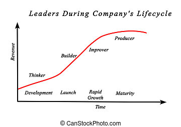 Leaders during Company's Lifecycle